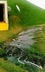 動画の一部。芝生の斜面にある排出口から燃料があふれ、白く見える。地面を経て排水口に流れ込んでいる=普天間飛行場内(提供)