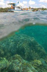 船上からアオサンゴ群落を視察する環境影響評価審議会=2009年8月29日、沖縄県名護市・大浦湾