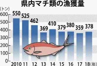 県内マチ類の漁獲量