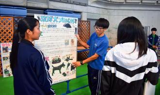 ブースの準備をする中部農林高の生徒たち=7日、宜野湾市