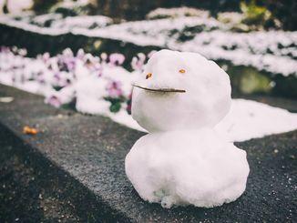 雪だるま(イメージ写真)