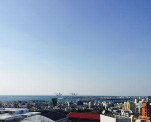 日陰は肌寒かったですが、日なたは暖かく過ごしやすい1日でした。