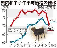 沖縄の子牛価格、5年ぶり前年割れ 下落基調に「現状が高すぎる」