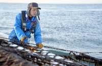 父超えるノリ漁師に 震災でゼロからの再出発、決意を胸に前へ進む