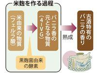 泡盛古酒特有「バニラ香」の由来は? 琉球大学と石川種麹店が証明