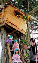 完成したツリーハウスで楽しむ子どもたち=5日午前、那覇市・真嘉比小学校
