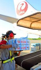 ベルトコンベヤーで宮古島産マンゴーを機体に運ぶJTA職員=6日、宮古空港