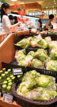 一玉498円!レタス減らすタコライス 葉野菜が品薄、沖縄県内で高騰