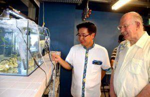 水槽で養殖されている海ブドウを視察するジョナサン・ドーファン学長(右)と長浜善巳村長=13日、恩納村の「OIST マリン・サイエンス・ステーション」