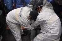 辺野古新基地:工事車両58台がシュワブ内に 機動隊、市民70人を強制排除