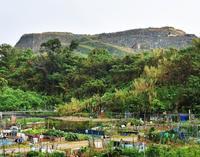 ごみ山処理、沖縄県が年度内に説明会開催へ 産廃停止で住民不安高まる