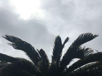 <沖縄地方が梅雨入り>那覇市は曇りで、過ごしやすい天気です