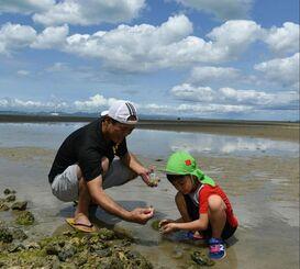 干潟で遊ぶ祖父と孫=13日午後2時ごろ、沖縄県うるま市与那城照間(古謝克公撮影)