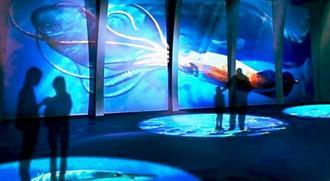床や壁に海洋生物が泳ぐ空間のイメージ(DMM.com提供)