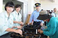 京都から宮古島へ、男児の生きた証 ヒマワリ植えて願う交通事故根絶
