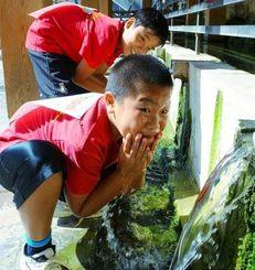 冷たい水で汗を洗い流し気合を入れる子ども=28日、金武町・金武大川