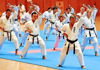 力強くサイの演武を披露する琉球古武道琉棍会=25日、県立武道館(金城健太撮影)