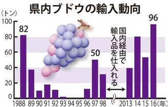 県内ブドウの輸入動向