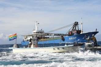 砕石運搬船に抗議する市民の船=22日午前8時半前、米軍キャンプ・シュワブ沖