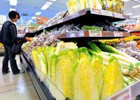 「鍋」したいのに…高値の野菜 白菜・キャベツ2~4倍 沖縄