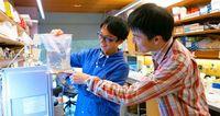 <西辻光希博士・有本飛鳥博士 モズクと海ぶどう研究>海藻ゲノム解読に力 優良品種の開発目指すOISTサイエンストーク(5)