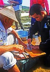 島の漁師に教わりながら、捕れた魚をさばく子ども