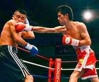 ボクシング:江藤光喜、圧巻のKO劇