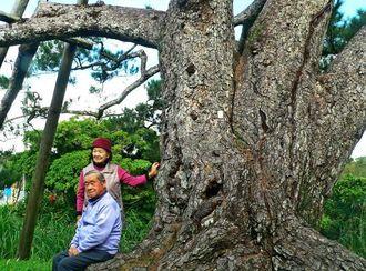 御神松に腰掛ける具志堅均さんと妻の美智子さん=名護市底仁屋区