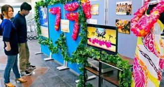 「カギマナフラ」の魅力を紹介するパネル展=28日午後、宮古島市・宮古空港