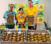 NZ直送のキウイはいかが 那覇青果が9月まで輸入「糖度高めで食べ応え」
