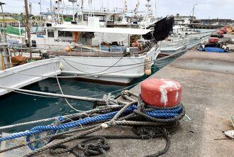 台風対策でロープを張り巡らし港内に係留された漁船=23日午後0時51分、糸満市西崎