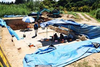 犬2匹の骨が発掘された現場。周辺では土器や貝殻などが出土した=29日、名護市安和