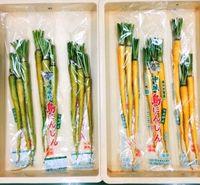 沖縄野菜・島ニンジンの黄色をキープ 効果あったのは? 県農業研究センターが実証