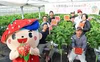 沖縄でイチゴと言えば・・・栽培開始から15年 宜野座村が「イチゴの里」宣言