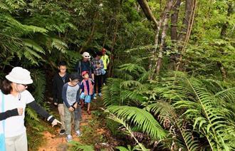 ガイドの案内で森の中を散策する家族連れ=10日、国頭村・やんばる学びの森(伊禮健撮影)