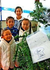 羽生選手から届いたクリスマスカードのコピーが飾られたツリー。県内でフィギュアスケートに励む子どもたちは喜んでいる=13日、南風原町・スポーツワールドサザンヒル