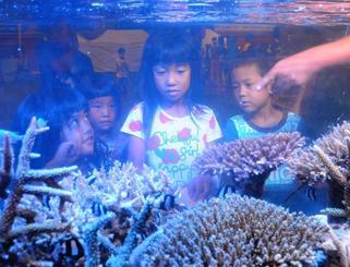 水槽内に展示された通常のサンゴと白化したサンゴを見比べる子どもたち=石垣市総合体育館
