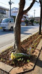 事故現場付近を市民が訪れ花を供えた=宜野湾市野嵩