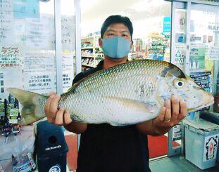 本部海岸で69.6センチ、4.45キロのタマンを釣った仲程斎道さん=9日