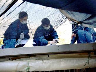 米軍ヘリ部品の落下地点を調べる県警捜査員=2017年12月21日、宜野湾市野嵩・緑ヶ丘保育園