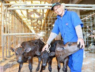 1頭の乳牛から産まれた県内初の3つ子の子ウシと酪農家の島袋秀雄さん=2日、沖縄市倉敷
