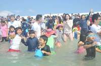 地域主導の観光へ経営的視点 八重山ビジターズビューロー、沖縄初の「DMO」登録へ