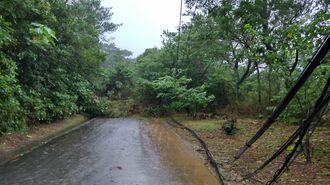 土砂崩れで通行止めとなっている「アーラ林道」=6月30日午後3時ごろ、久米島町儀間