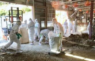 宮崎県日向市の養鶏場で防疫作業をする担当者=1日午前(同県提供)