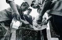 琉球弧の伝統的な葬法「洗骨」の貴重な写真見つかる 1977年撮影、沖縄本島では最後の方か