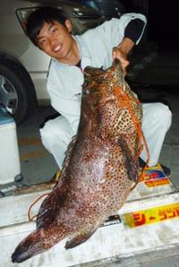 [有釣天]太い道糸が不気味に沖へ 2人がかりで約5分、釣り上げたのは93センチ超アーラ