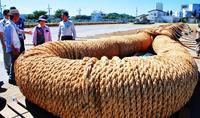 ギネス記録の綱、進捗どうですか 「那覇大綱挽」8日開催