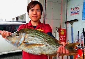 伊江島で59.5センチ、3.33キロのタマンを釣った吉川毅兵さん=17日