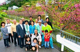 区民が川沿いに植えた桜が鮮やかな花を咲かせている=北中城村石平