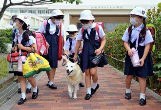 子どもたちの下校を見送るハッピー(中央)=7日、宜野湾市真栄原・沖縄カトリック小